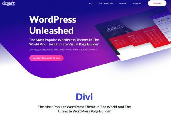 Divi Web Designer Australia